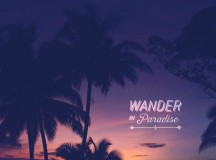 Wander in paradise – Treasured Memories from Playa Junquillal, Guanacaste, Costa Rica