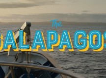The Galapagos – Calling Home